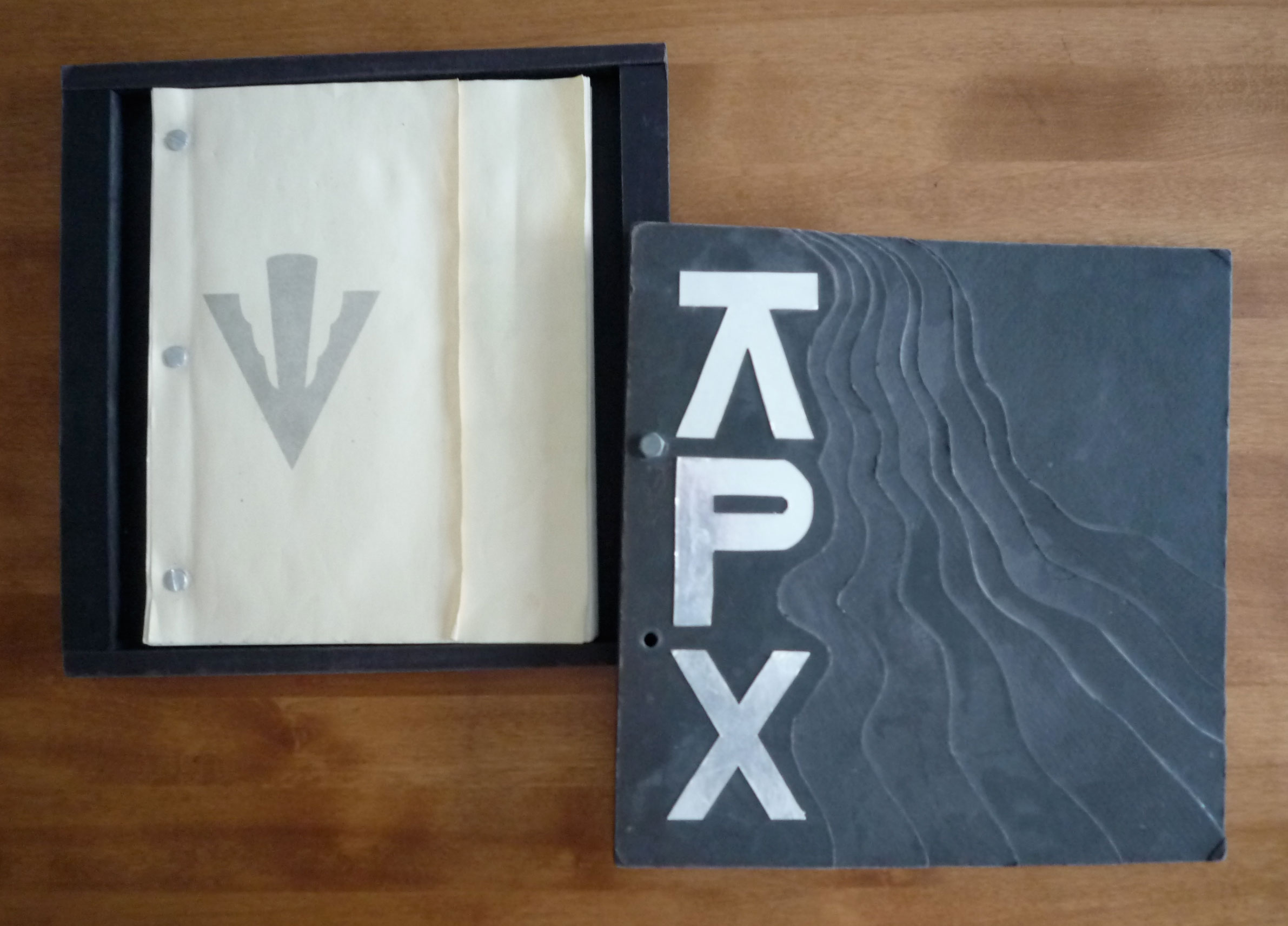 pledgebook-1991-BetaAlpha